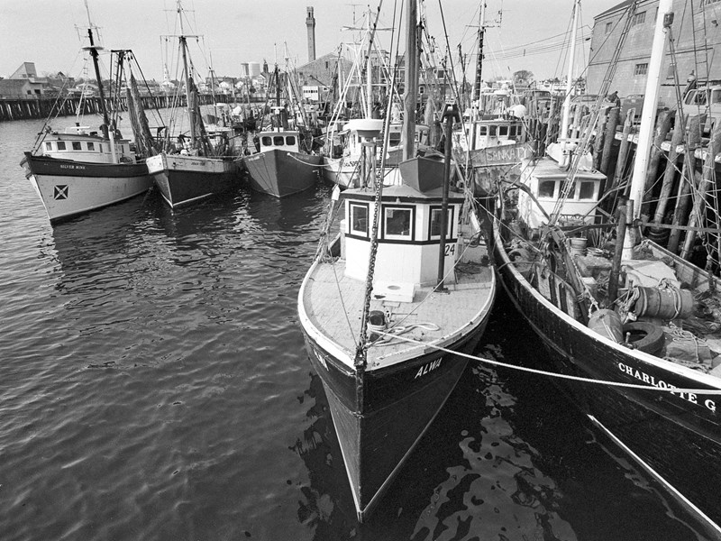 Milton Moore's Photography Explores Cape Cod's Dying Fishing Industry
