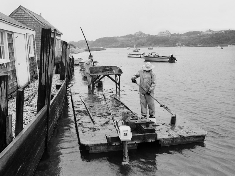 In a foggy, autumn drizzle, men clear the day's debris from a motorized scow used to tend an oyster grant – an area of river bottom where they were deeded rights to grow oysters. The scow is tied up at the work shanties Oyster River in West Chatham, October 1976. The shanties have lined this stretch of river for more than a century. <br />